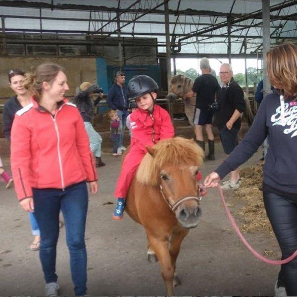 pony-ritje-maken