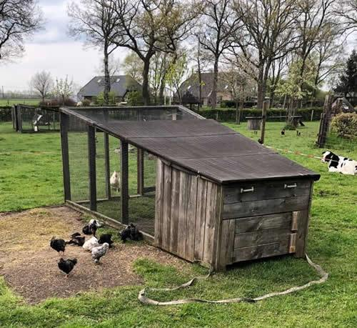 kippenhok-kinderboerderij
